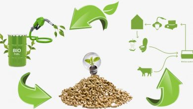 Biomass, catalytic pyrolysis