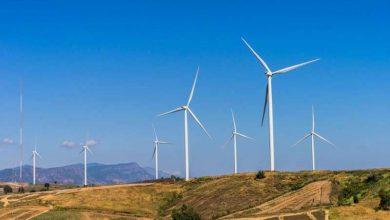 Wind farm hybridization with biomass energy