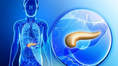 Creating human pancreas