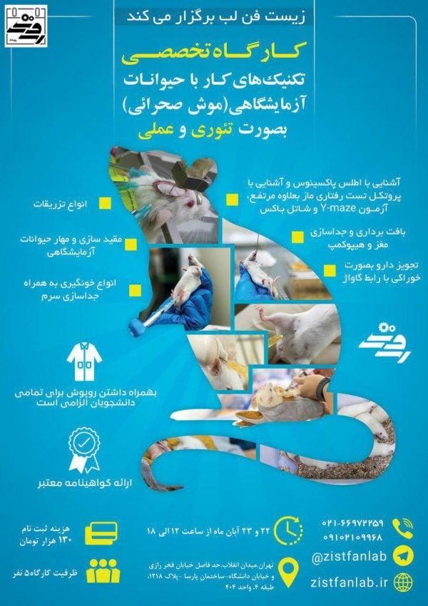 کارگاه کار با حیوانات