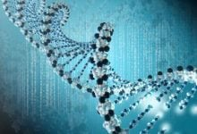 Photo of توالی یابی ژنوم بدون نیاز به PCR