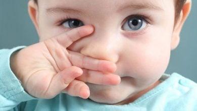 ژنهای شکلدهی بینی