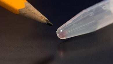 Photo of ذخیره سازی تصاویر دیجیتال در DNA و امکان بازیابی اطلاعات