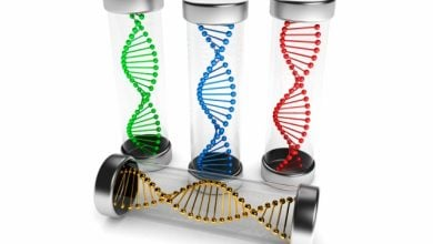 Photo of مهندسین MIT توانستند واکسن های مبتنی بر RNA قابل برنامه ریزی، طراحی کنند