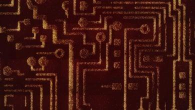 Photo of باکتری های مقابله کننده با سرطان