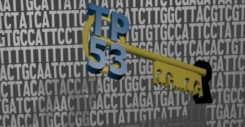 پروتئین بازدارنده سرطان