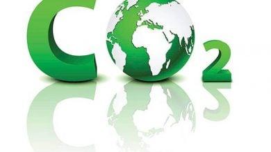 Photo of سوخت های زیستی بیش از آن که باعث کاهش گاز دی اکسید کربن شوند، موجبات افزایش آن را فراهم می آورند