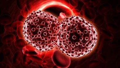 Photo of قاتلان طبیعی سرطان خون