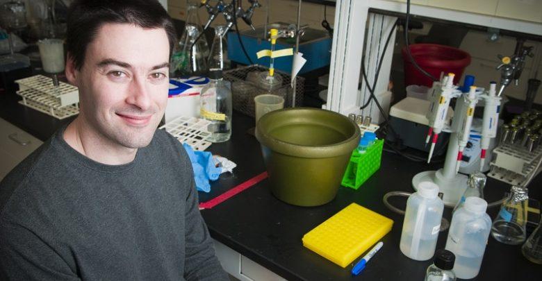 کاهش سمیت باکتری اشریشیا کلای، توسط افزودنی ساده مواد غذایی