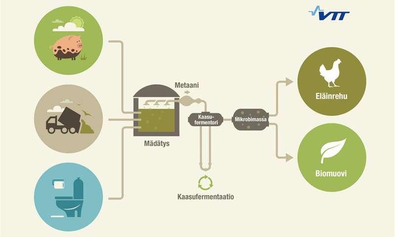 زیست گاز، منبع جدید تولید پروتئین و پلاستیک زیستی