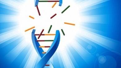 Photo of پیش بینی پاسخ سلولهای سرطانی به شیمی درمانی