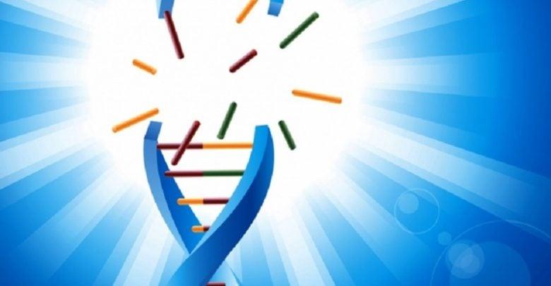 پیش بینی پاسخ سلولهای سرطانی به شیمی درمانی