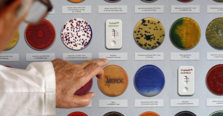 تکامل مقاومت آنتی بیوتیکی