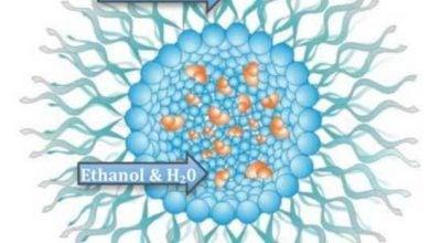 Photo of استفاده از نانوتکنولوژی در سوخت های زیستی