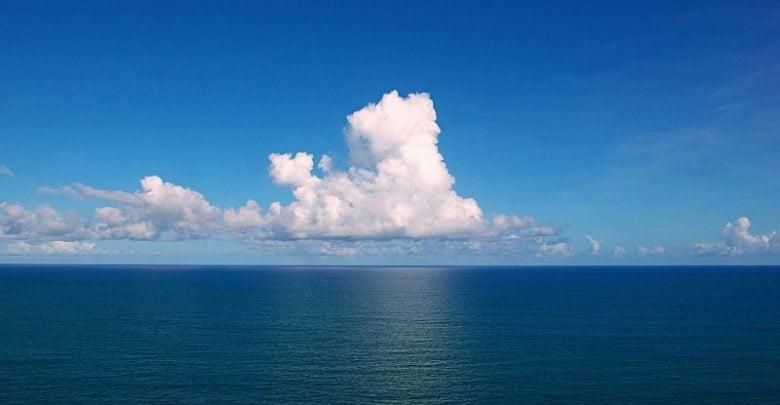 ریزجلبکهای دریایی، منبع غذا و انرژی آینده ی بشر!
