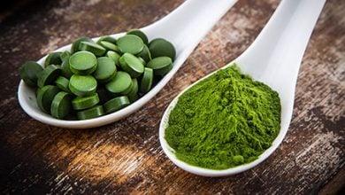 جلبک، غذایی بی رقیب و ارزشمند