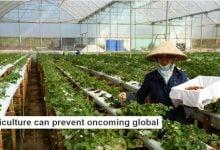 """کشاورزی با تکنولوژی پیشرفته می تواند از وقوع """"جنگ جهانی آب"""" جلوگیری کند - زیست فن - زیست فناوری"""