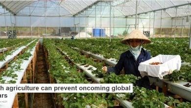 "Photo of کشاورزی با تکنولوژی پیشرفته می تواند از وقوع ""جنگ جهانی آب"" جلوگیری کند"