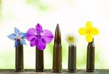 گلوله های دوست دار محیط زیست - زیست فن - زیست فناوری