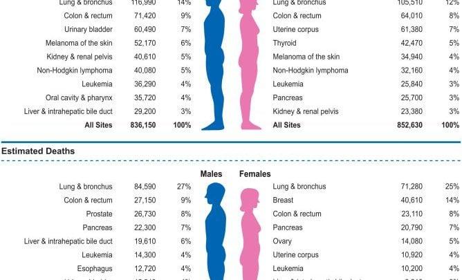 نتایج حاصل از مطالعه آماری در طی دو دهه گذشته نشان دهنده کاهش 25 درصدی مرگ ناشی از سرطان در ایالات متحده آمریکا است. بر این اساس 2.1میلیون مرگ ناشی از سرطان در بین سال های 1991 تا 2014 کمتر رخ داده است.