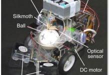 Photo of خودرو رباتیک با رانندگی حشرات!