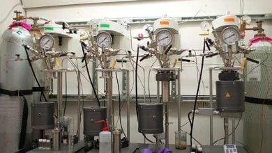 Photo of تولید تایرهای خودرو با استفاده از منابع تجدیدپذیر