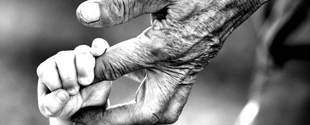 اولین داروی ضد پیری با تأیید علمی - زیست فناوی