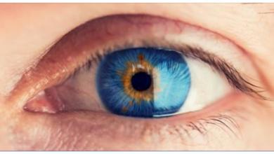 Photo of کشف عملکرد پروتئین های خاص: بهبود اندازهگیری بالینی تغییرات شبکیه چشم