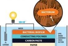 ساخت سلول سوختی میکروبی بهتر با کاغذ