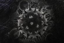 قائم موشک بازی HIV با سیستم ایمنی - زیست فناوری - زیست فن