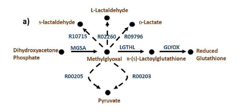 یافتن واکنشهای مفقود در یک شبکه متابولیک با استفاده از داده های هم بیانی ژنها