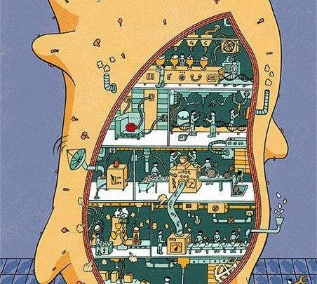 تهیه نقشه عمومی شبکه های اندرکنش ژنتیکی در سلول های سرطانی