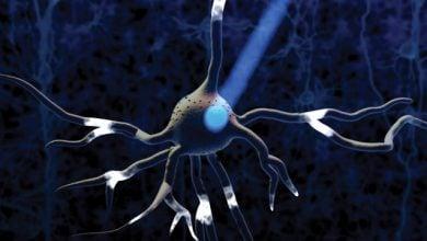Photo of مطالعهی سلولهای زنده با کمک پروتئینهای حساس به نور