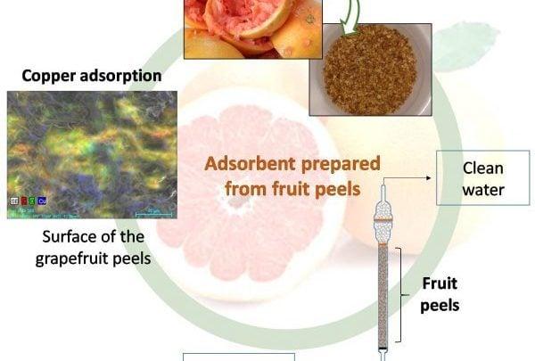هر ساله در سراسر دنیا، حدود 38.2 میلیون تن ضایعات پوست میوه از صنایع غذایی حاصل می شود. این ضایعات کاربرد خاصی ندارند و منجر به بروز مشکلات عدیدهای در صنایع غذایی می شوند. اخیرا محققان موفق به ساخت جاذب های زیستی از پوست پرتقال شده اند که می توان از آن در حذف فلزات سنگین و ترکیبات ارگانیک، جهت تصفیه پساب، بهره گرفت.