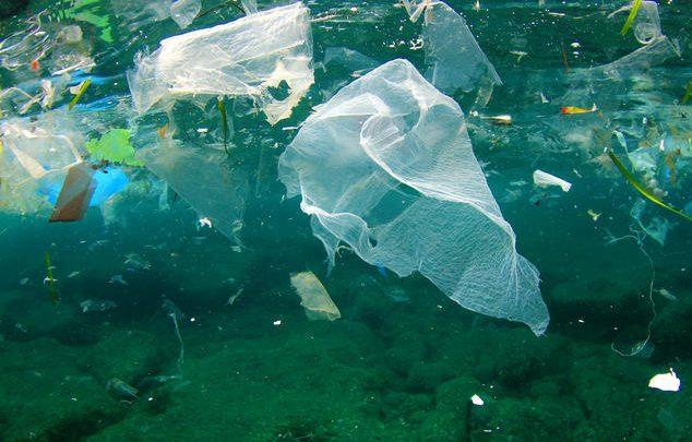 زیستپالایی برای مبارزه با آلودگیهای پلاستیکی