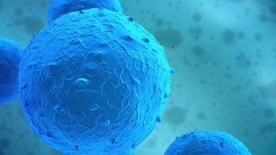 Photo of استفاده از پیوند اتولوگ سلول های بنیادی خونساز (AHSCT) به منظور درمان بیماری MS