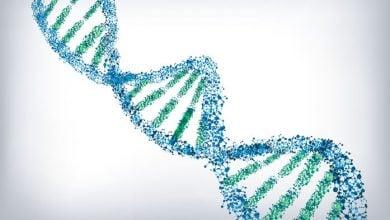 Photo of ذخیرهسازی اطلاعات در DNA؛ همهی اطلاعات دنیا در یک اتاق