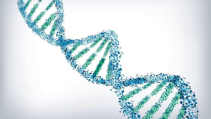 انسان امروزه بیش از هر زمانی با مشکل حافظه روبروست؛ اطلاعاتی که در دو سال گذشته ساخته شده بیشتر از کل اطلاعاتی است که در تاریخ به وجود آمده! این جریان عظیم اطلاعات به زودی از حد ظرفیت همهی سختافزارهای ذخیرهکننده فراتر میرود. حالا دانشمندان راه جدیدی برای ذخیرهی اطلاعات دیجیتال در مولکول DNA پیدا کردهاند. این سیستم قادر است 215 پتابایت (یعنی 215 میلیون گیگابایت) اطلاعات را در تنها یک گرم DNA ذخیره کند.