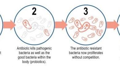 Photo of ابداع روشی برای شناسایی باکتریهای مقاوم به آنتیبیوتیکهای روز مبادا