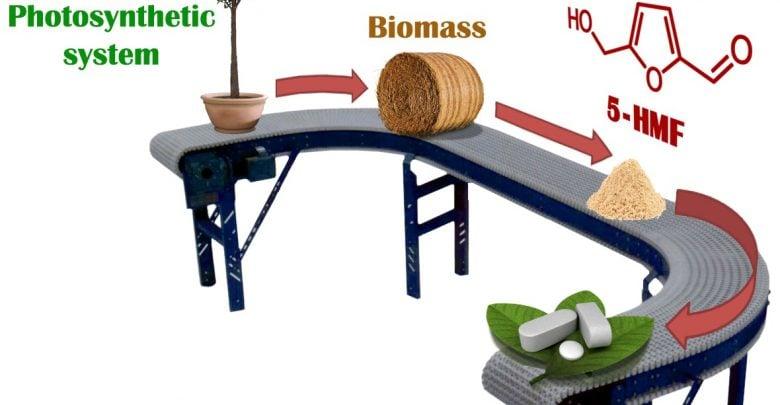 سنتز داروهای حیاتی از زیست توده طبیعی میتواند نسبت به روشهای سنتی مقرون به صرفهتر باشد و محصولات جانبی سمی کمتری تولید کند.