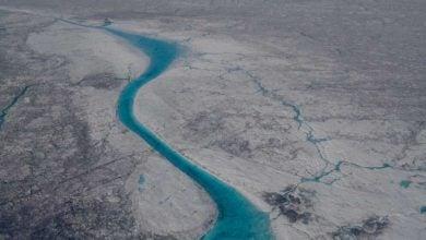 انتشار کربن زیستفعال از طریق میکروبهای ساکن در پهنههای یخی - اخبار زیست فناوری