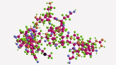 Photo of یک استراتژی قوی برای افزایش فعالیت ضدمیکروبی پپتیدها