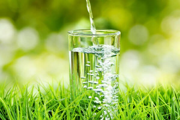 This Is How We Taste Water - اخبار زیست فناوری