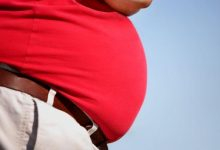 تاثیر تغییرات اپی ژنتیکی بر روی چاقی - اخبار زیست فناوری