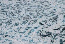 افشا شدن راز یخ سبزرنگ در قطب شمال - اخبار زیست فناوری