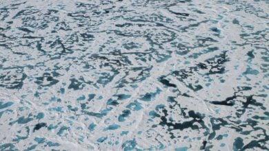 Photo of افشا شدن راز یخ سبزرنگ در قطب شمال