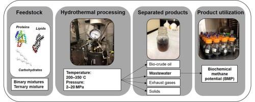 تولید انرژی پاک از باقیماندههای غذایی - اخبار زیست فناوری