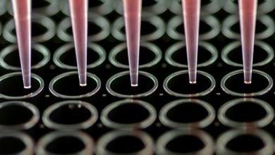 Photo of افزودن ژرفای کشت سلولی