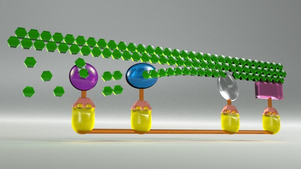 شکستن متفاوت زیستتوده لیگنوسلولزی، به کمک آنزیمهای روده گیاهخواران - اخبار زیست فناوری