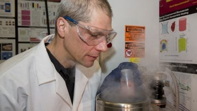 Photo of بافت منجمد با نانو ذرات آهن زنده می شود